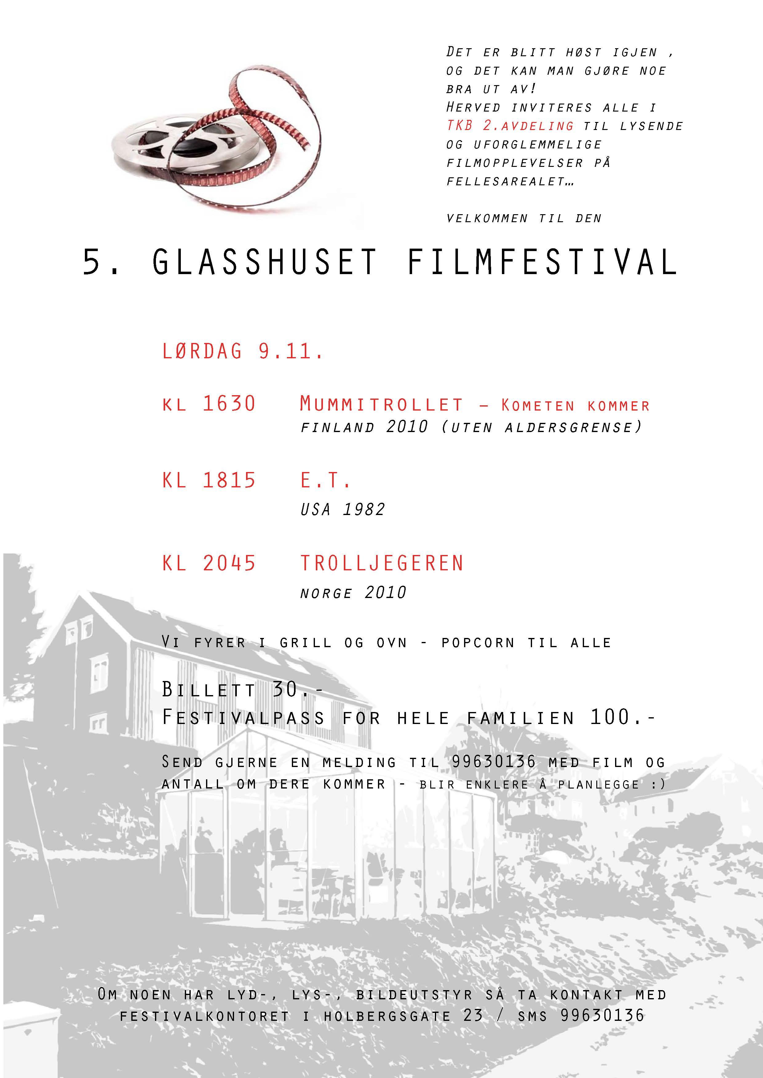 13 filmfestival plakat