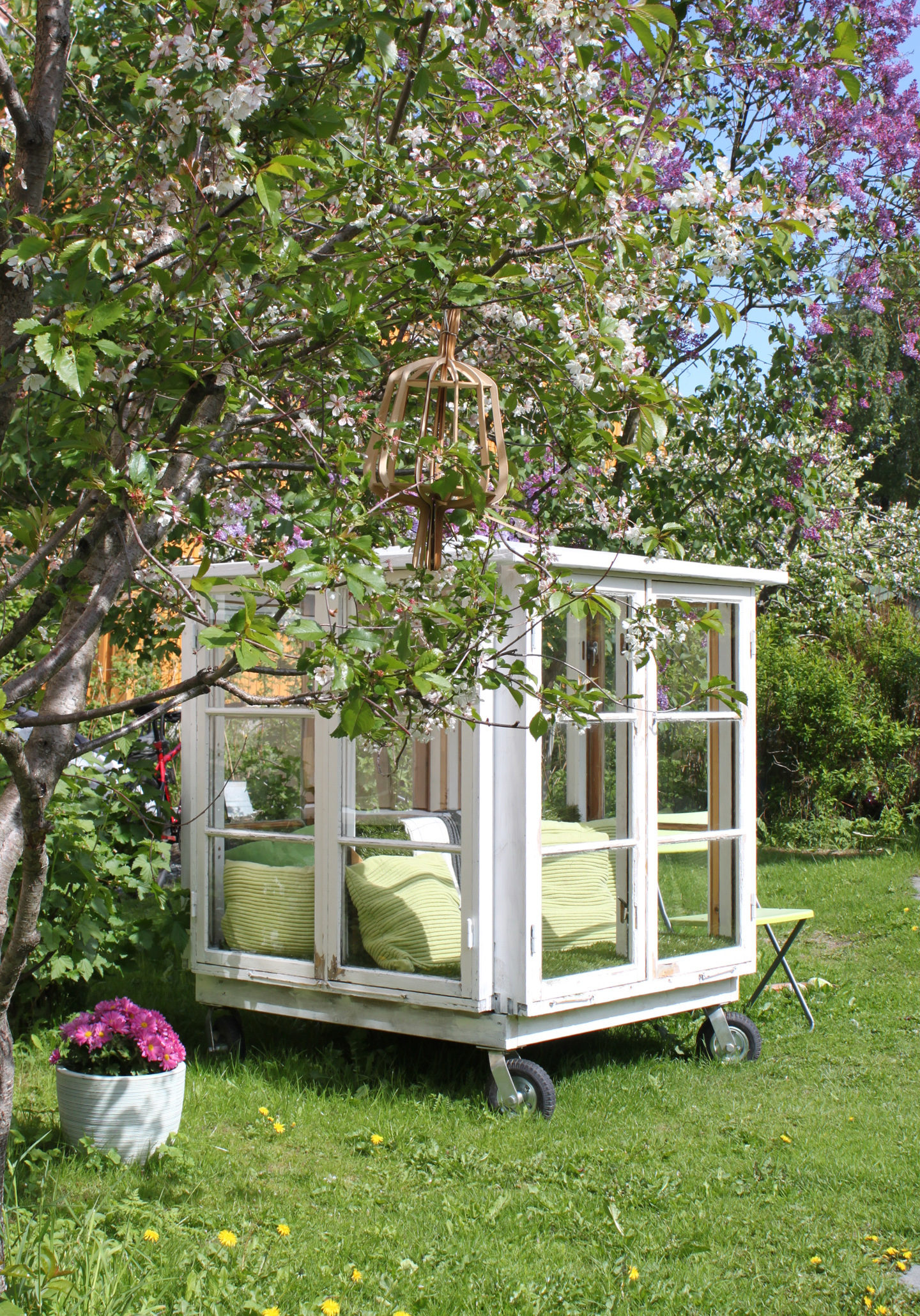 Te-huset kirsebærtre bjørkearkitektur